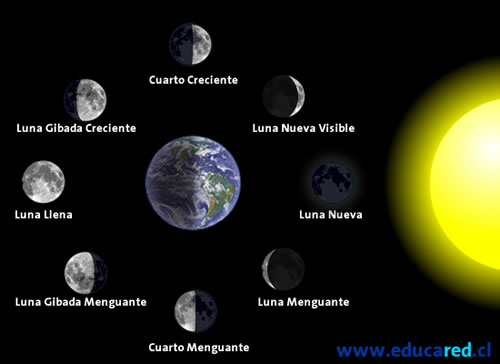 Fases_de_la_luna_2